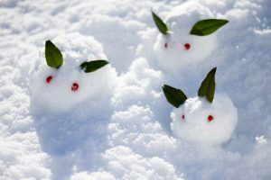 雪うさぎ〜